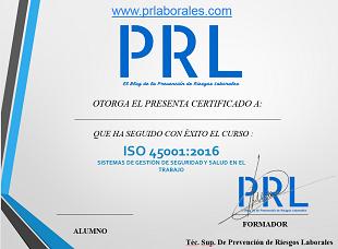Curso ISO 45001 2016